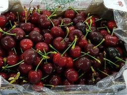 Sweet cherries from Greece