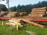 Cherestea din pin de la producător - photo 5