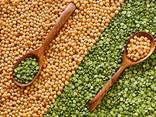 Fasole, semințe de in, linte, naut, mazăre și alte produse agricole. - photo 2