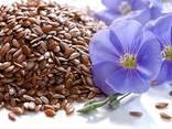 Fasole, semințe de in, linte, naut, mazăre și alte produse agricole. - photo 3