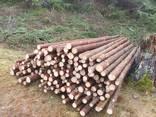 Мелкий, тонкий баланс, мягкой древесины 3,5 / 8 х 220/225 см - фото 4