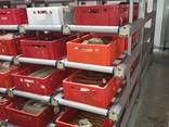 Оборудование для мясопереработки, гигиена и санитария - фото 6