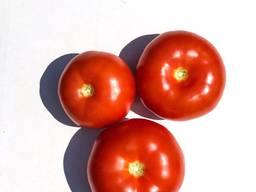 Овощи и фрукты оптом - фото 5