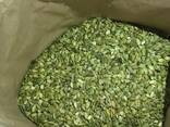 Linte de fasole din seminte de dovleac - фото 2